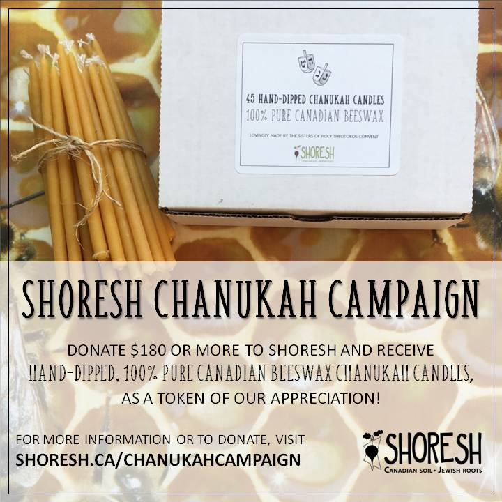 Chanukah Candle Campaign